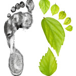 Picture of Carbon Footprint